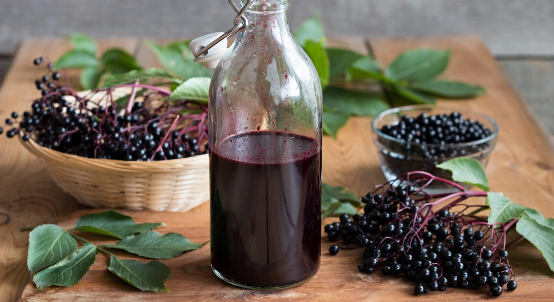 Recipe for Elderberry Syrup