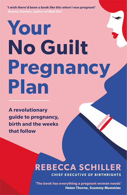 The Working Womans Pregnancy Book