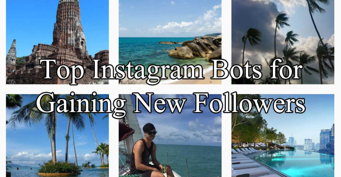 Top Instagram Bots Share Features So Choosing The Best For You Is About Time Commitment Some Are Easier To Use Than Others They Have A Steeper