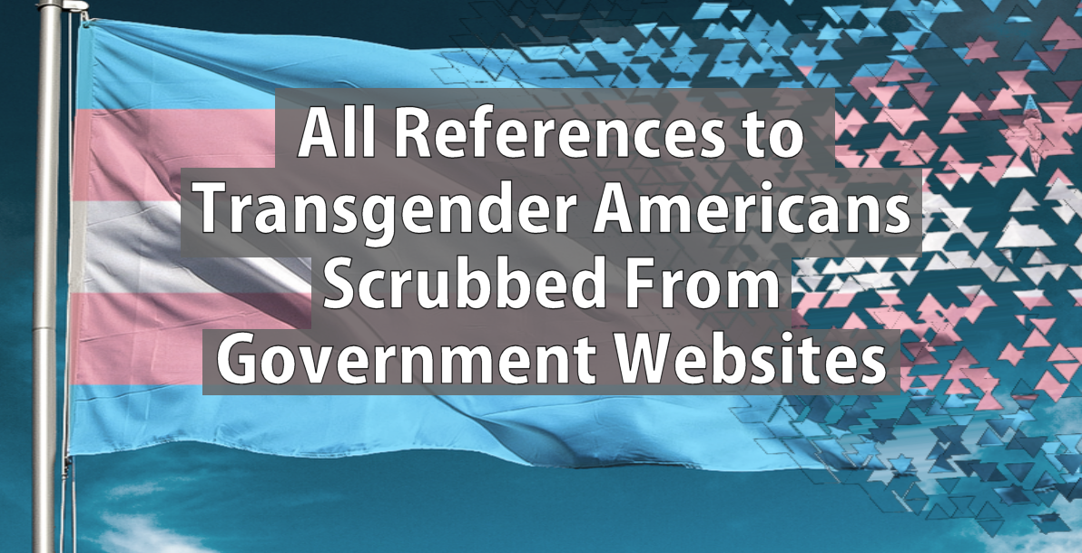 Transgender websites