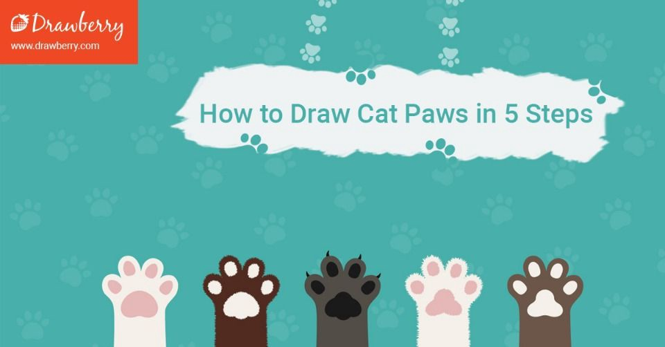 How To Draw Cat Paws In 5 Steps Drawberry Art Medium
