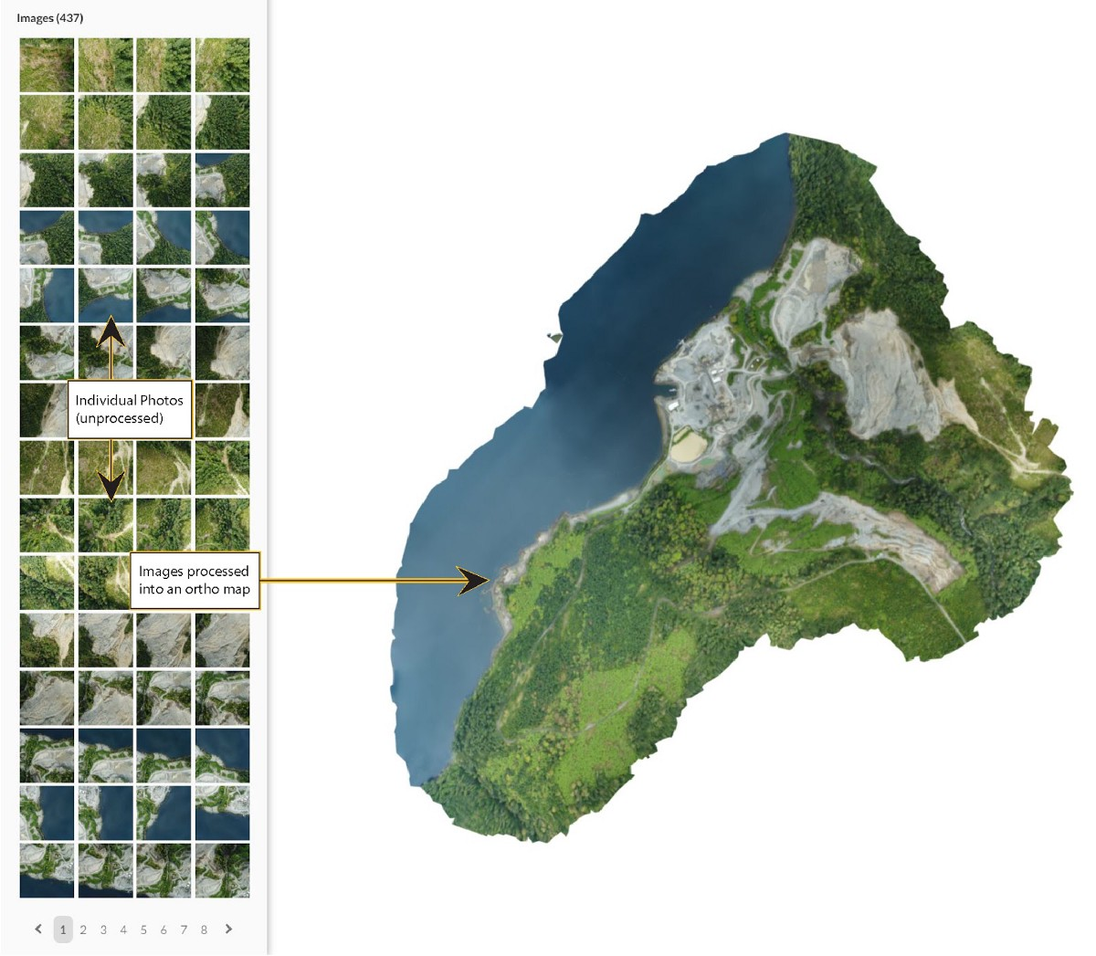 multiple individual drone images when pieced together make an orthomap or an orthomosaic map