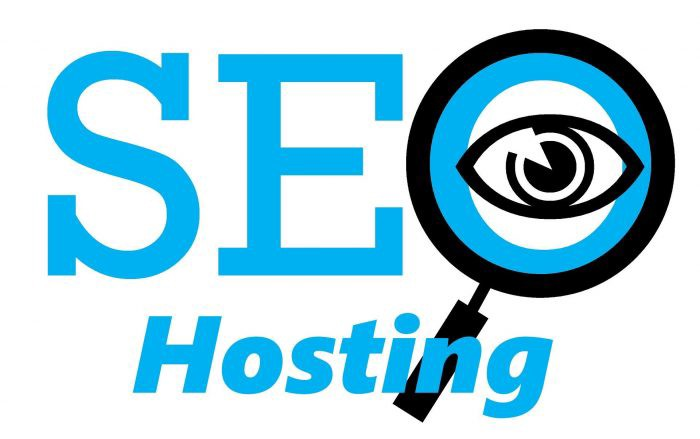 Image result for seo hosting