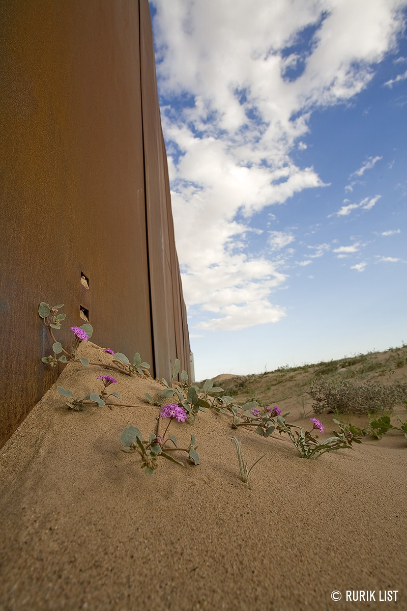 How Trumps Altered Landscape For >> How Trump S Wall Would Alter Our Biological Identity Forever