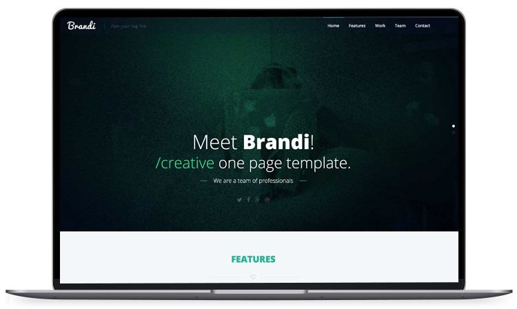100 free bootstrap html5 templates for responsive website like brandi is creatively crafted gorgeous and astounding free bootstrap html5 website template the template looks clean simple and minimal accmission Images