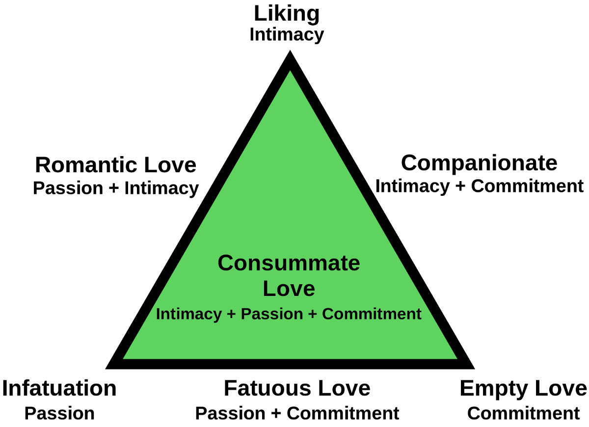 exploring love through minding theory and triangular theory of love essay