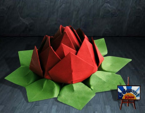 How to make an origami lotus flower by tadashi mori in this video tutorial you will to learn how to make an origami lotus flower designed by tadashi mori an awesome origami project that is easy and looks mightylinksfo