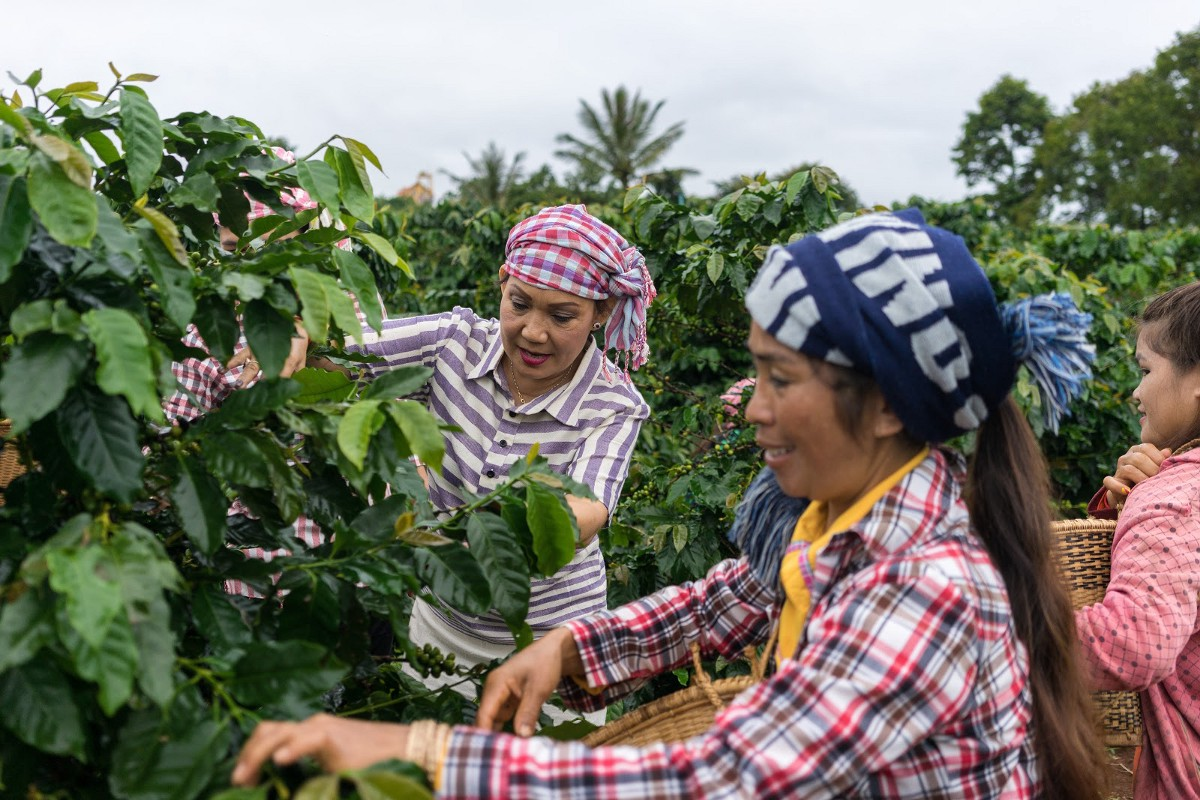 Nanda spreads her knowledge of coffee cultivation with local women. / Thomas Cristofoletti for USAID