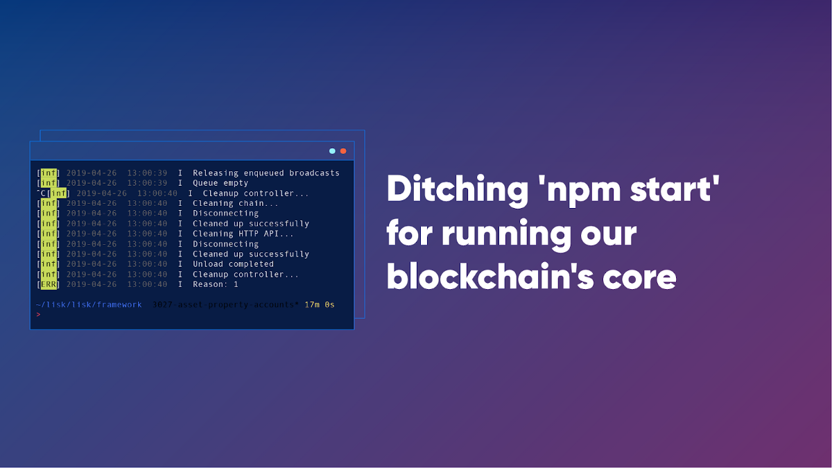 QnA VBage Why we stopped using 'npm start' for running our blockchain core's child processes