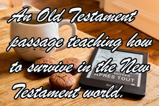 How To Survive the New Testament World