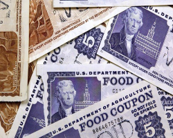 imagine of different amounts of food stamp coupons