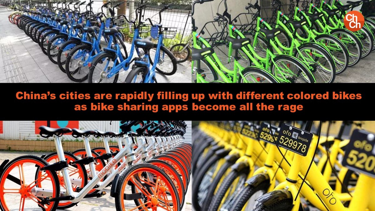 the national bicycle industrial company implementing The national is the middle east's leading english-language news service bring you the latest news, opinion and features from the region and internationally.