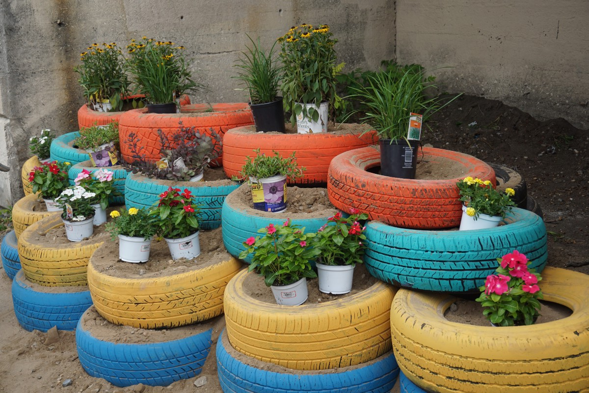 From Trash To Tire Garden Treasure Star News