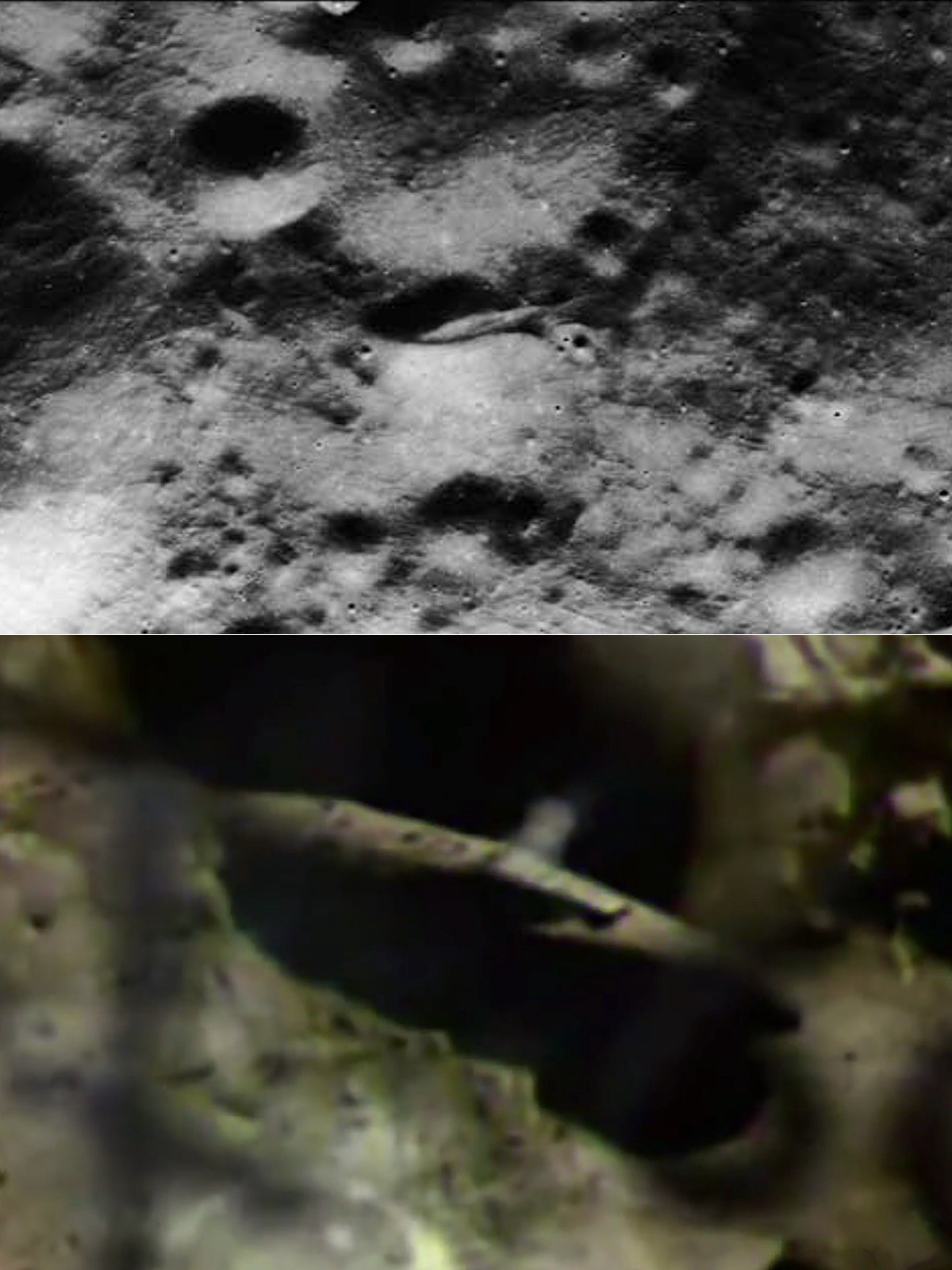 The craft shown in Rutledge's videos match the anomaly captured by Apollo 15