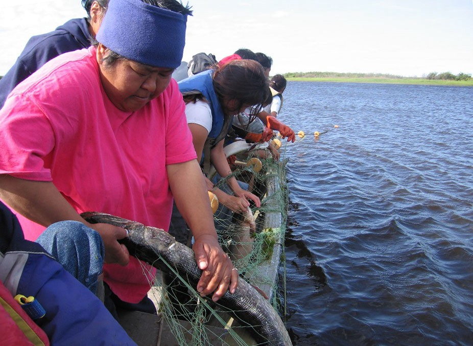 yOUNG PEOPLE ON BOAT PULL FISH OUT OF NET