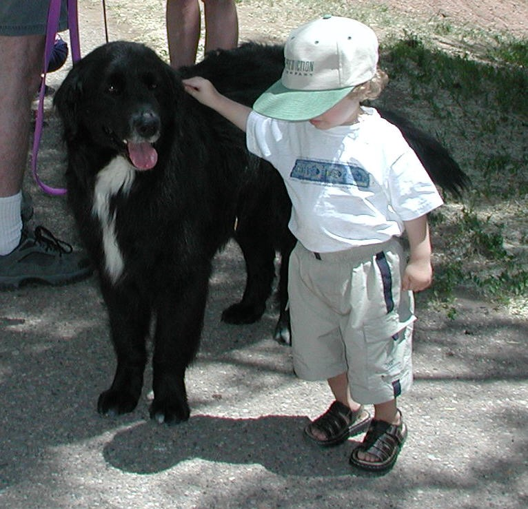 I too once had a noble Newfoundland name Maggie