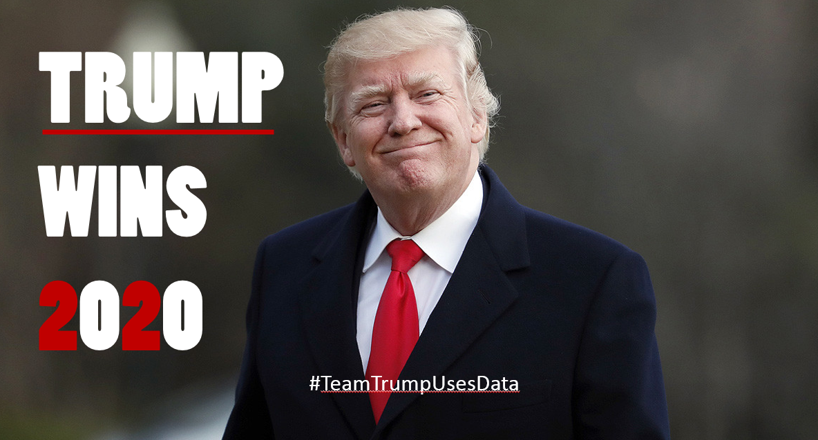 Image result for trump wins 2020