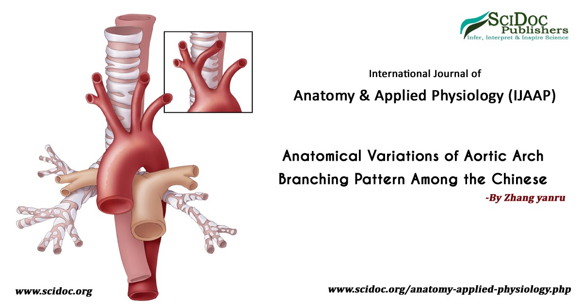Anatomical Variations of Aortic Arch Branching Pattern Among the Chinese