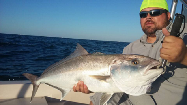 Shark fishing charters daytona beach sharksflorida medium for Fishing charters daytona beach florida