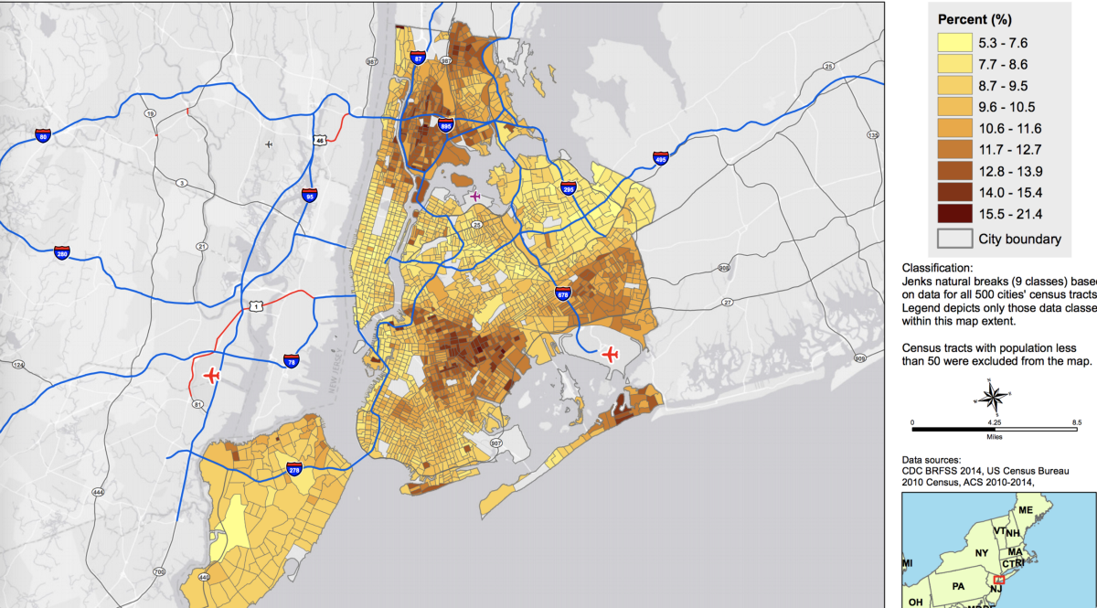 Asthma By The Numbers Asthma In The South Bronx Medium