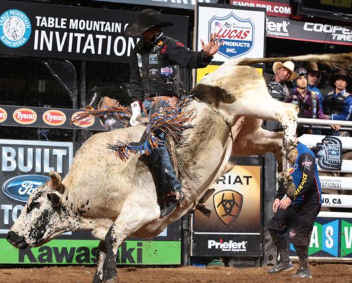 Exclusive Bidding Begins For The Professional Bull Riders