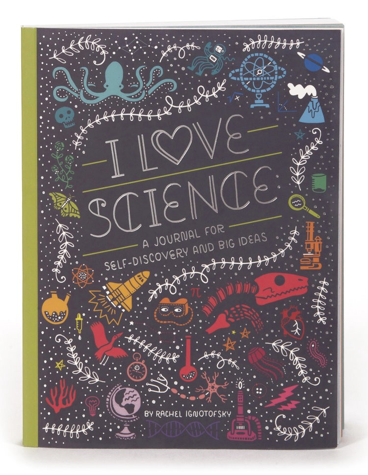 Femmes of stem holiday gift guide book edition michelle for I love to design