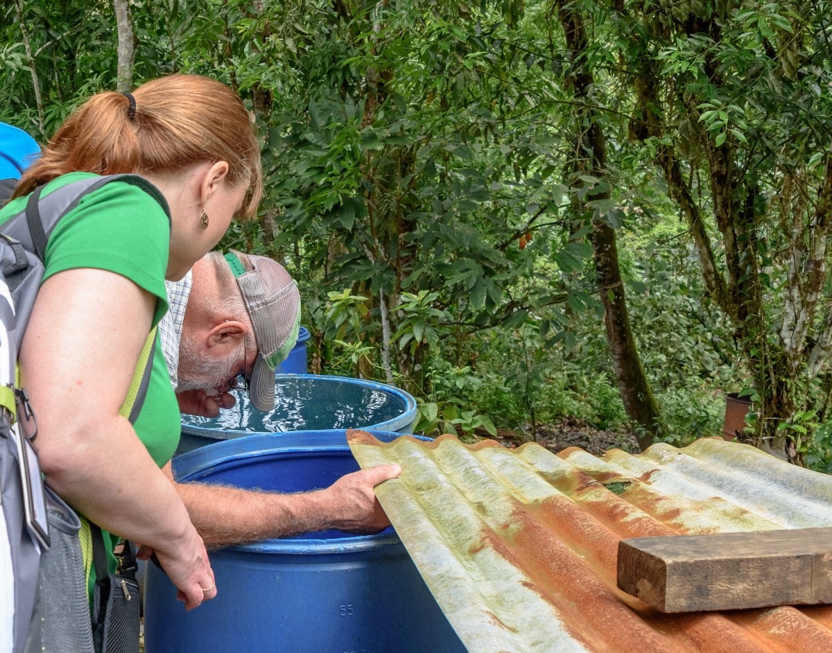 Molly Scheel and Dave Severson, a professor at the University of Notre Dame's Department of Biological Sciences, inspect a barrel for Aedes larvae. / Keshava Mysore