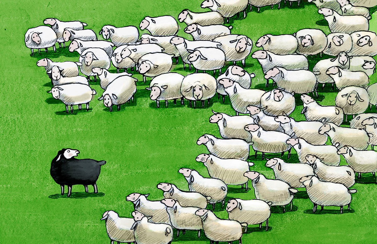 Are You The Black Sheep In A Black Family