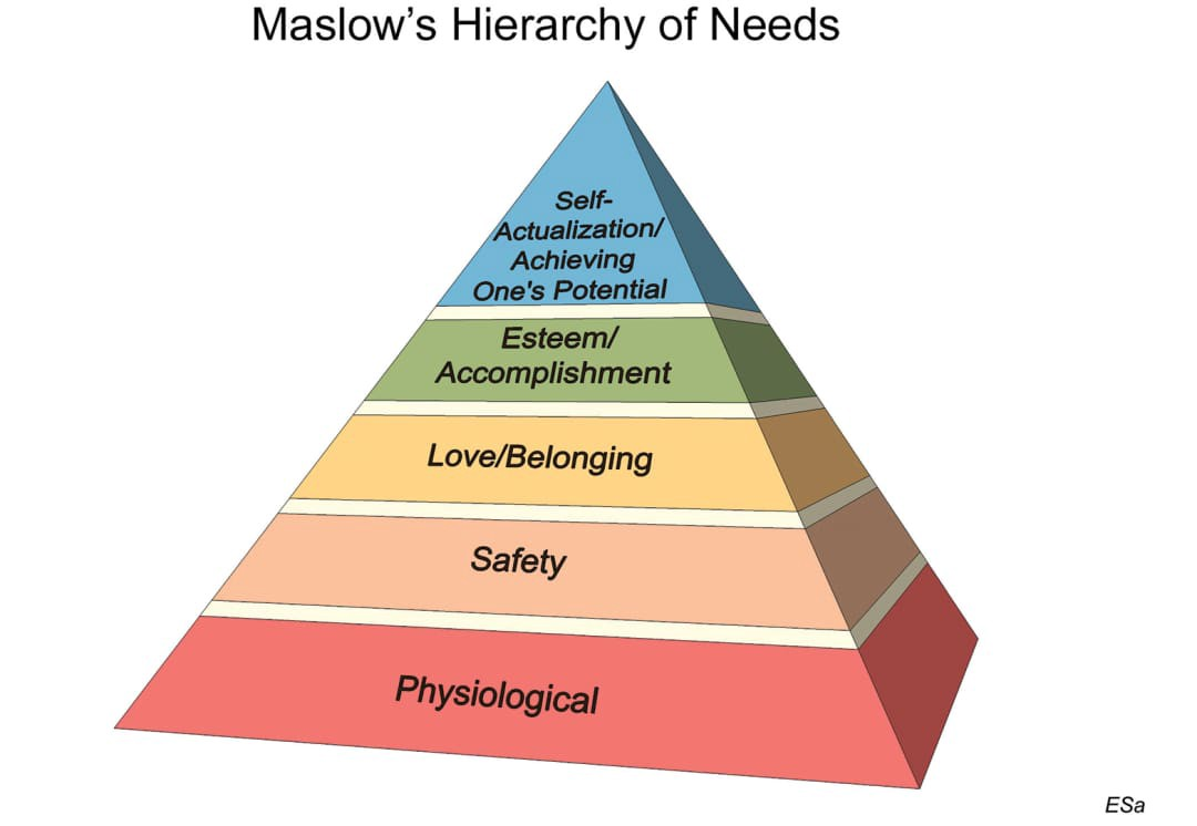 need Adult hierarchy maslows