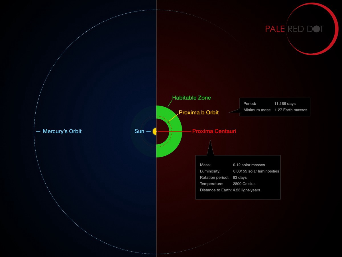 Ten ways proxima b is different than earth starts with a bang the orbit of proxima b as compared with the orbit of mercury image credit esom kornmesserg coleman pooptronica