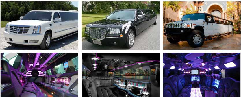 The Wedding That You Plan Is Substantially Important So Transportation For Guests Should Be Suitable This Situation