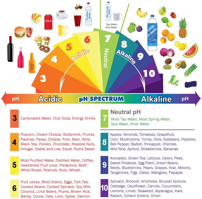 Alkaline & the Importance of PH Balance in your Body