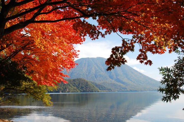 Image result for nature japan  autumn