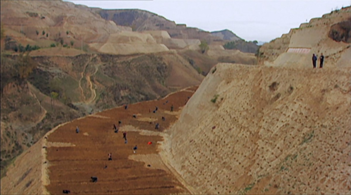 ecosystem restoration in documentary Green Gold by John D. Liu