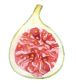 b918ca5f50 12. Figs are highway robbery. At like, $2 each for a fig, it has become a  luxurious decadence in Australia, unlike in Greece where they sell whole  bags for ...