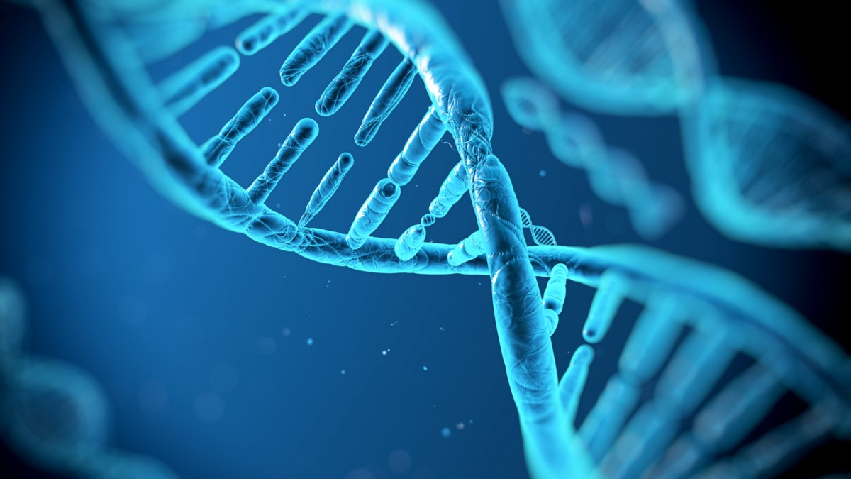 an in depth description of the human dna Quality and sequencing depth for a thorough description of dna dna quality level, see technical note depth required for non-human genomes.