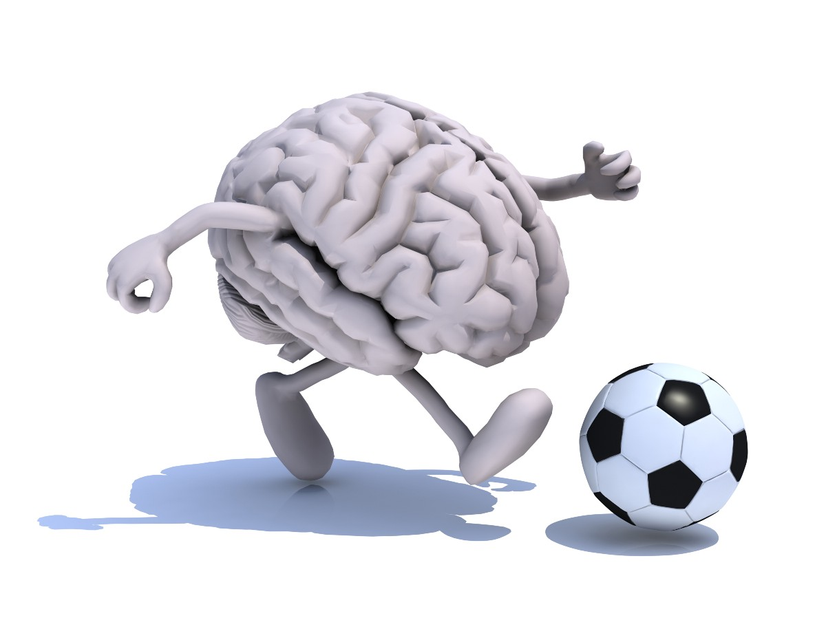 An Athletes Brain How Brain Structure Defines Physical Ability