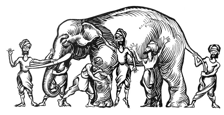 The product team and the elephant