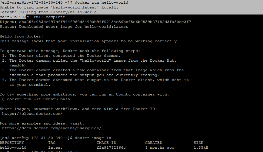 yum install not working in docker container