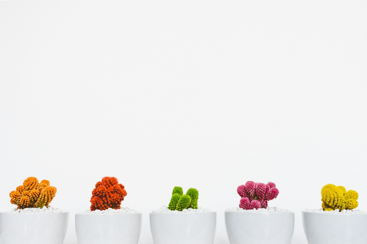 Why minimalism is not for rich people the coffeelicious for Why minimalism