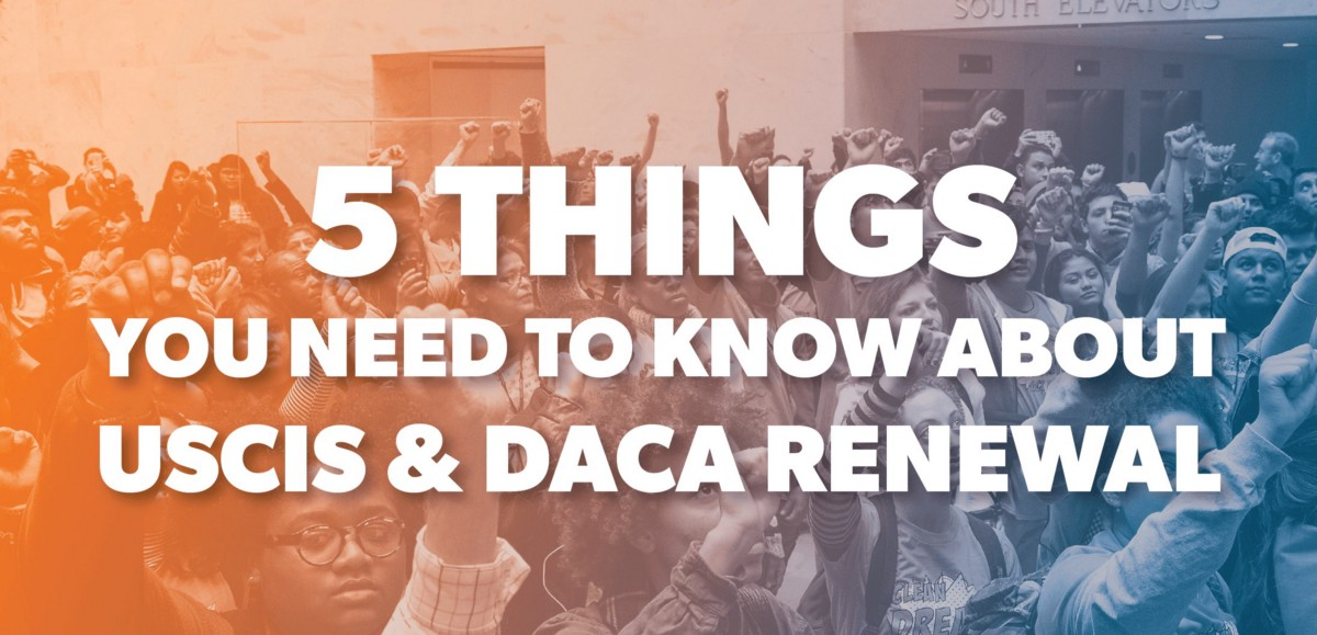 5 things you need to know about USCIS & DACA Renewal!