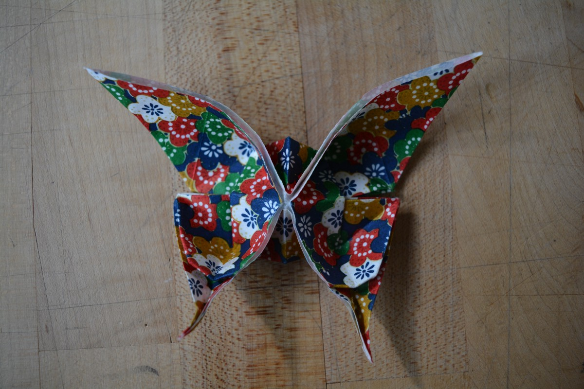 Swallowtail Butterfly Left Mariposa Right Origami Practice