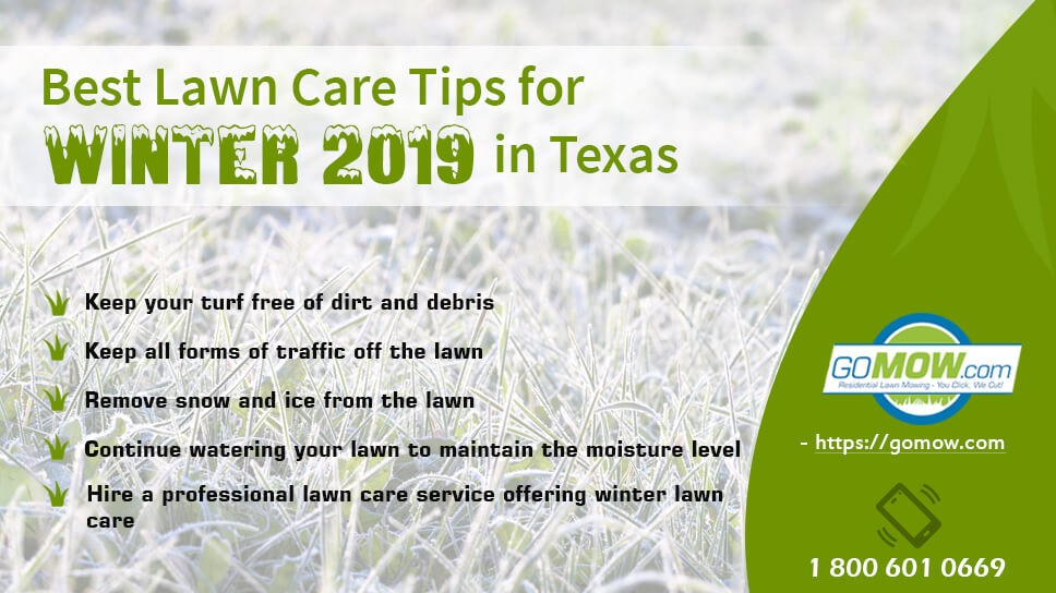 Caring For Your Lawn In Winter Doesn T Require Many Challenges You Either Have To Hire A Service Near Or Do It Yourself