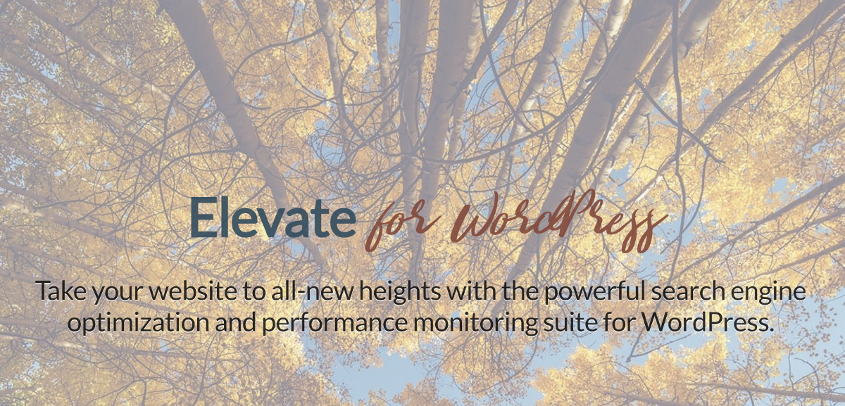 Elevate is at its core a plugin designed to help increase the search rankings for self-hosted WordPress websites. But it goes beyond that, ...