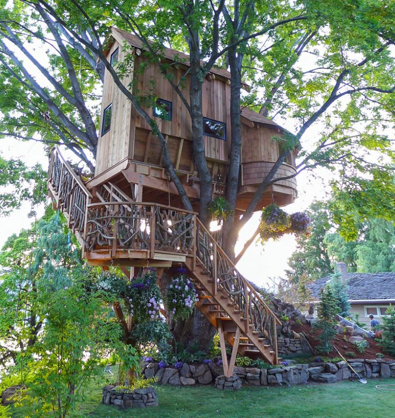 Dream Tree House Abodes Live In A Cool Tree Home Carol