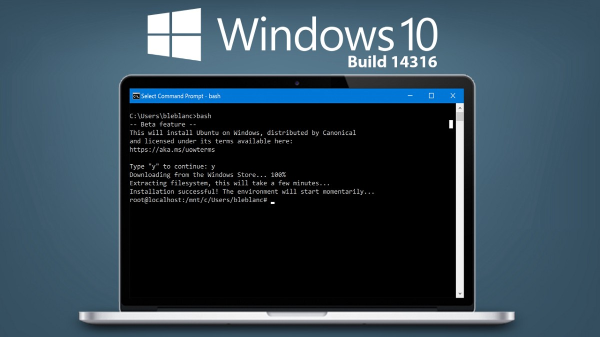 reset user password with command prompt
