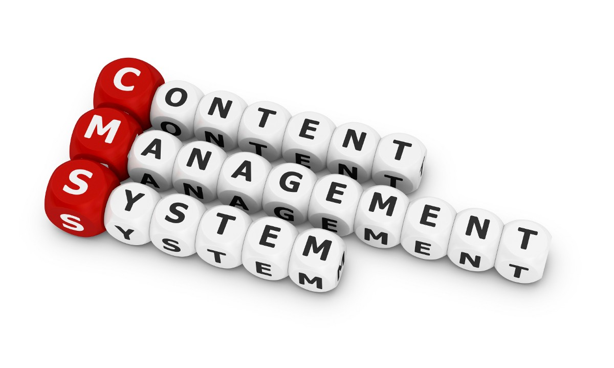 Some Factors that Help Choose the Content Management System