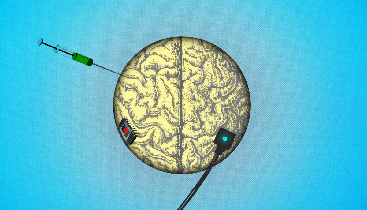 The Ins And Outs Of Brain To Brain Communication