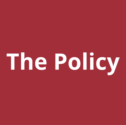 The Policy - cover