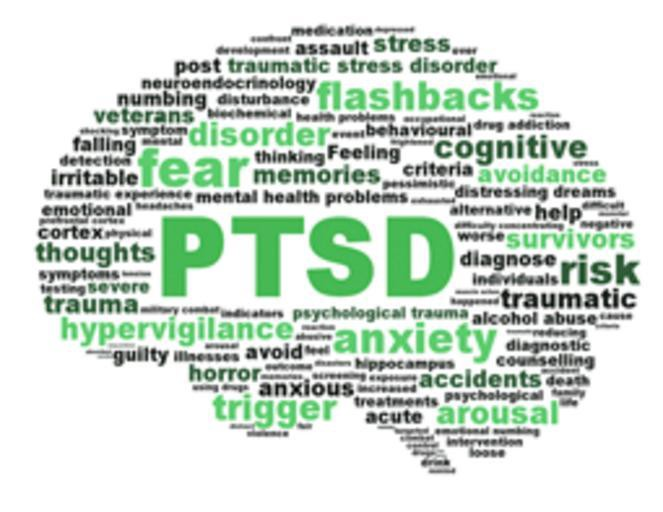 Image result for PTSD and OCD